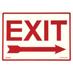397-EG-7520-F-102-RP - JessupGlow In The Dark Exit Signs