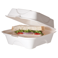 ECPEP-HC6 - Bagasse Hinged Clamshell Containers