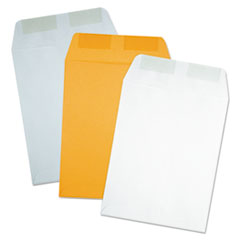 QUA41485 - Quality Park™ Catalog Envelope