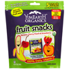 Yummy Earth Organic Gummy Fruit Snacks BFG 47936