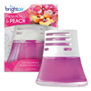 Bright Air BRIGHT Air® Scented Oil™ Air Freshener BRI 900134CT