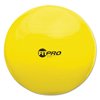 ergonomicchairs: Champion Sports FitPro Ball Chair