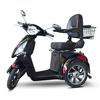 EWheels (EW-81) 3-Wheel Scooter - The Dude Flame Scooter EWH EW-81