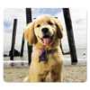 Fellowes Fellowes® Recycled Mouse Pad FEL 5916401