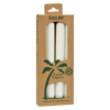 New Health & Wellness: Aloha Bay - Palm Tapers™ White - 4 Candles