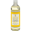 soaps and hand sanitizers: Deep Steep - Foaming Handwash Refill Grapefruit Bergamot - 16 fl oz