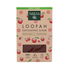soaps and hand sanitizers: Earth Therapeutics - Loofah Exfoliating Bar Soap Peaches and Passion - 4.2 oz