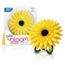 Bright Air Daisy In Bloom Air Freshener - Sunny Bloom & Citrus BRI900120