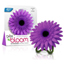 Bright Air Daisy In Bloom Air Freshener - Juicy Bloom & Raspberry BRI900121