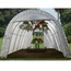 Rhino Shelter Instant Greenhouse 12'W x 20'L x 8'H Round Style MDMGRN12208R