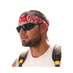 ERG150-12317 - ErgodyneChill-Its® 6700/6705 Bandana/Headband