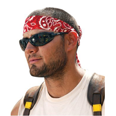 ERG150-12305 - ErgodyneChill-Its® 6700/6705 Bandana/Headband