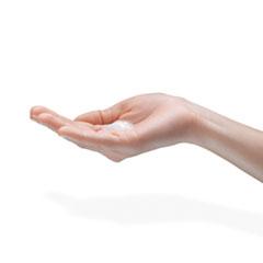 GOJ881603EA - Botanical Foam Handwash