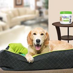 BRI900258EA - BRIGHT Air® Pet Odor Eliminator™