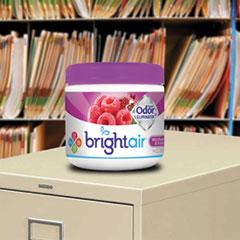 BRI900286CT - BRIGHT Air® Super Odor™ Eliminator