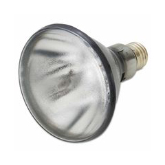 ORS387-507320 - MagnafluxBlack Light Bulbs