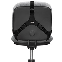 FEL8037601 - Fellowes® Professional Series™ Back Support