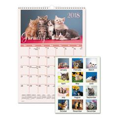 AAGDMW40028 - AT-A-GLANCE® Kittens Wall Calendar