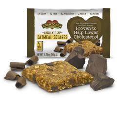 BFG64069 - CorazonasChocolate Chip Oatmeal Squares