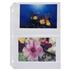 CLI52564BNDL2BX - C-Line Products - 35mm Ring Binder Photo Storage Pages, 4 x 6, Side Load
