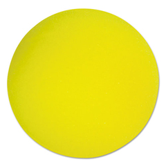 CSIRD7 - Champion Sports Uncoated Regular-Density Foam Balls