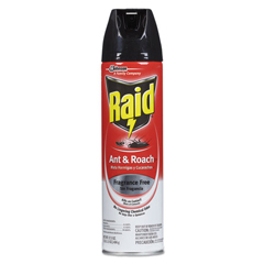 DVOCB117173EA - Raid® Fragrance Free Ant and Roach Killer
