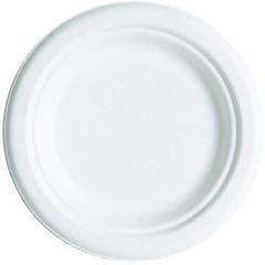ECPEP-P016 - Compostable Sugarcane Dinnerware