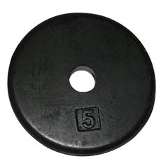 FNT10-0602 - Fabrication EnterprisesIron Disc Weight Plate - 5 lb