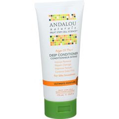 HGR1514512 - Andalou NaturalsConditioner - Ultimate Moisture Deep - Argan Oil Plus - 6 oz