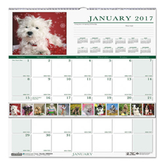 HOD3651 - House of Doolittle™ Earthscapes™ 100% Recycled Puppies Monthly Wall Calendar