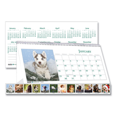 HOD3659 - House of Doolittle™ Earthscapes™ 100% Recycled Puppy Desk Tent Monthly Calendar with Photos