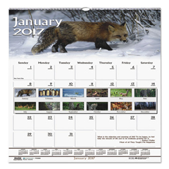 HOD3732 - House of Doolittle™ Earthscapes™ 100% Recycled Wildlife Monthly Wall Calendar