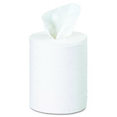 Kimberly Clark Professional Center Pull Towels