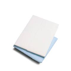 MON10811100 - McKessonGeneral Purpose Drape Physical Exam Drape 40 X 48 Inch NonSterile, 100EA/CS
