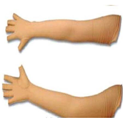 MON29323000 - Patterson MedicalCompression Glove Open Finger Medium Shoulder Length Right Hand Lycra / Spandex