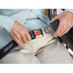 MON93943000 - Skil-CareSkil-CareTM Seatbelt