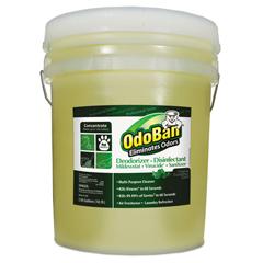 ODO9110625G - OdoBan® Professional Series Deodorizer Disinfectant