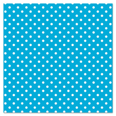 PAC0057425 - Pacon® Fadeless® Designs Bulletin Board Paper