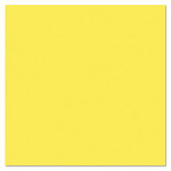 PACMMK04716 - Pacon® Plastic Poster Board