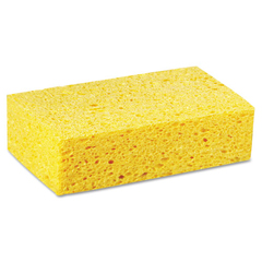 PADCS3 - Large Cellulose Sponges