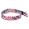 Ergodyne Chill-Its® 6700/6705 Bandana/Headband ERG 150-12313