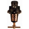 Coilhose Pneumatics Heavy Duty Series Regulators ORS 166-8802
