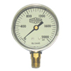 Dixon Valve Liquid Filled Gauges DXV 238-GLS425