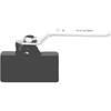Dixon Valve Ball Valves DXV 238-IBV25