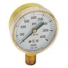 Gentec Pressure Gauges GEN 331-G20B-F100SP