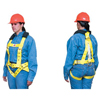 Lewis Manufacturing Co. Fall Arrest Harnesses LWM 418-18-1109