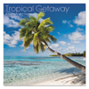 At A Glance AT-A-GLANCE® Landmark® Tropical Getaway™ Wall Calendar AAG LML71610
