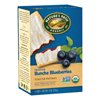 Organic Frosted Blueberry Toaster Pastries