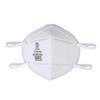 DaSheng N95 Particulate Respirator BSC 285715