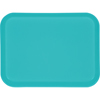 "Glasteel Solid Rectangular Tray 13.75"" x 10.6"" - Turquoise"